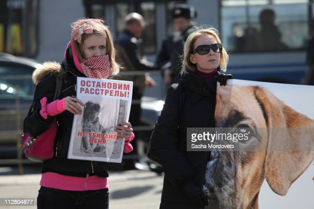 Animal rights activists hold up posters during a demonstration on April 20 2011 in Moscow Russia The number of stray dogs on Moscow streets is...