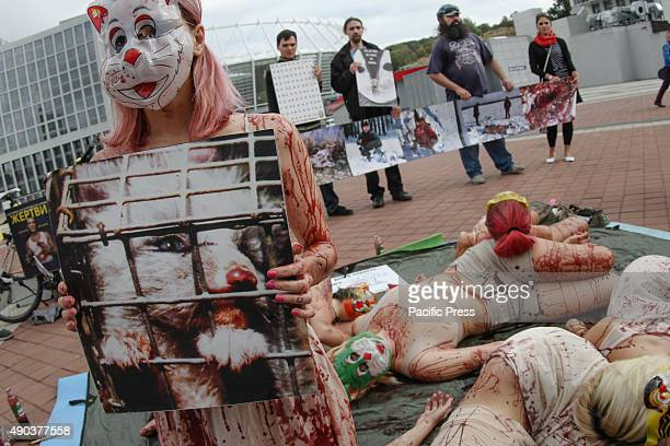 Animal rights activists in bloodstained clothes are seen lying in front of the placard which say Wear a fur pay for infanticide Animal rights...