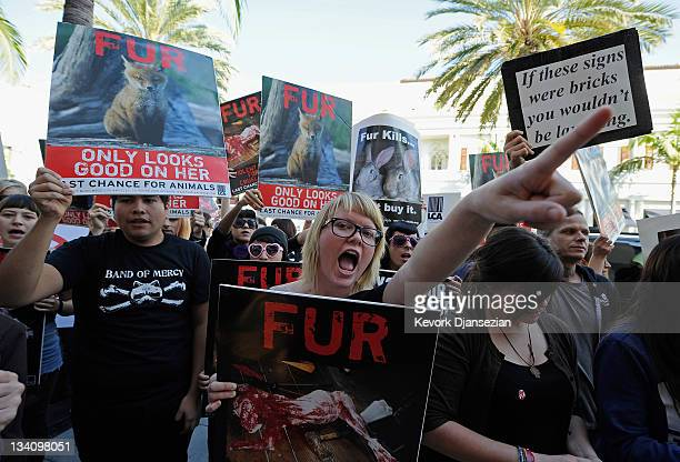 Animal rights groups and PETA stop in front of a Max Mara store on Rodeo Drive during an anti-fur demonstration urging Black Friday shoppers to stop...