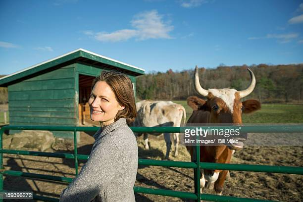 animal sanctuary. a woman beside the fence, feeding two cows. - dierenwelzijn stockfoto's en -beelden