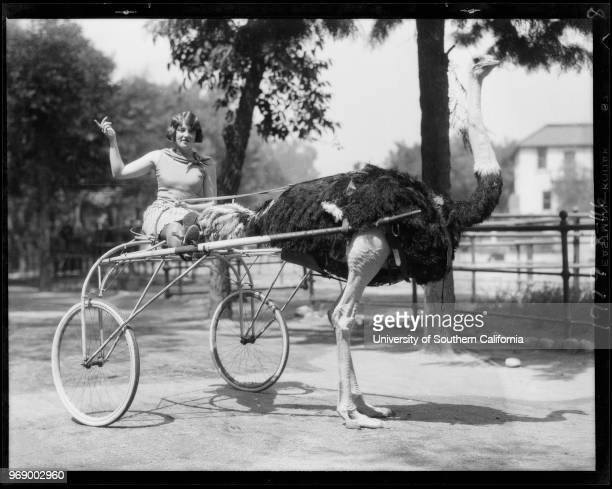 Animal shots for publicity Dorothy Day woman and animals Southern California 1929