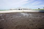 Animal waste lagoon on a modern dairy farm