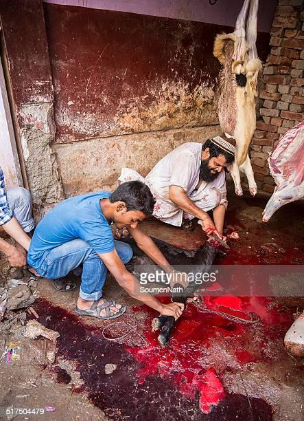 tiere geopfert, mark eid-ul-adha. - kurban bayram stock-fotos und bilder