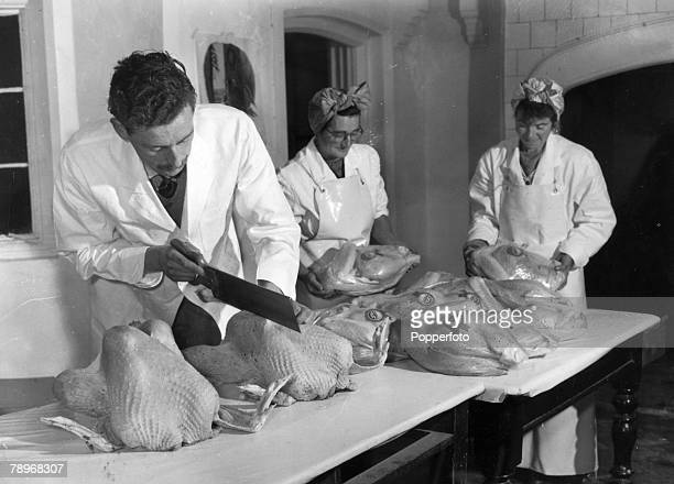 Animals Birds/Poultry Food Turkeys pic circa 1950's Great Witchingham Norfolk England Turkeys being prepared for sale and dispatch This early picture...