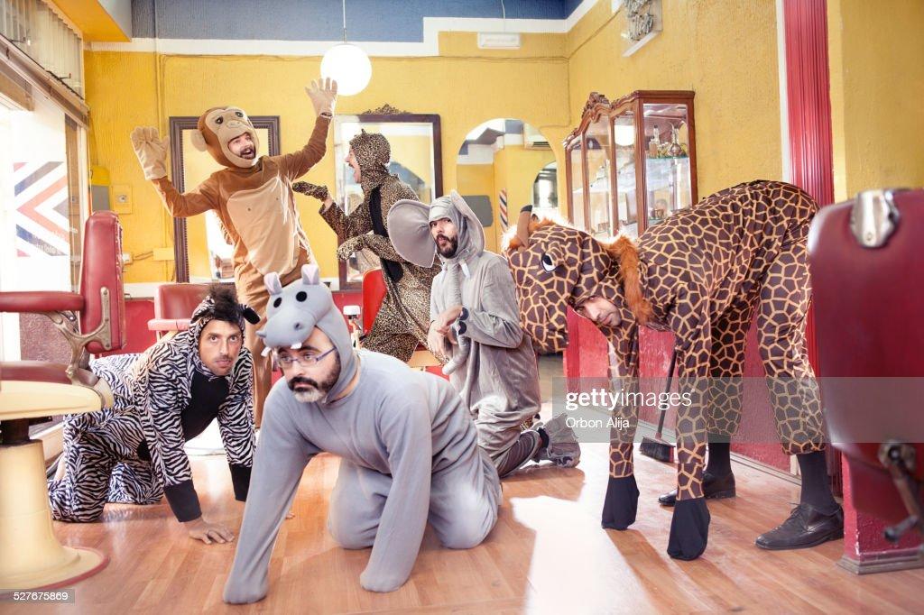 Animals in a Hair Salon : Stock Photo