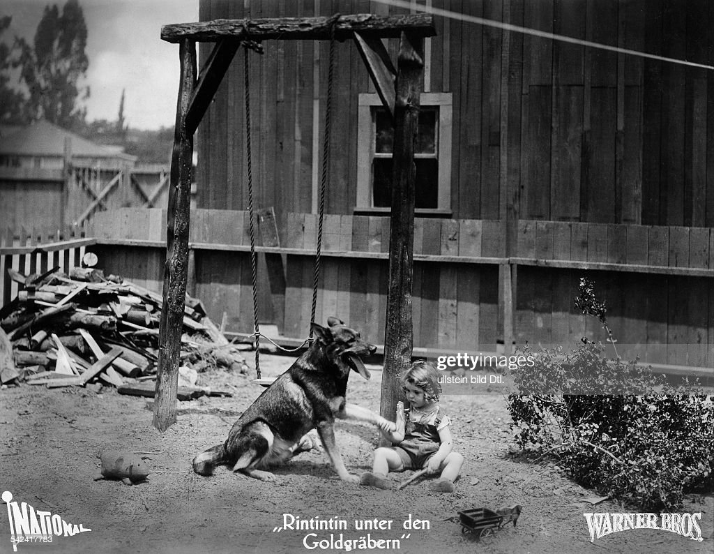 Animals in movies Scene from the movie 'Jaws of Steel'' Directed by: Ray Enright USA 1927 Produced by: Warner Brothers Vintage property of ullstein bild : News Photo