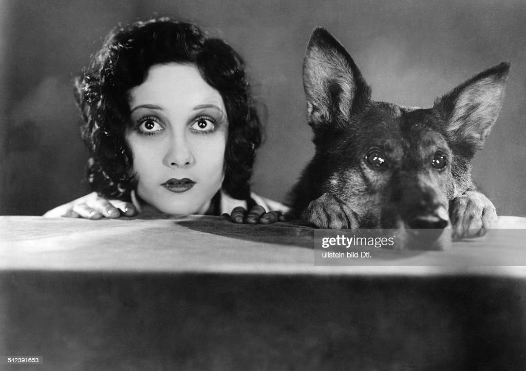 Animals in movies Scene from the movie 'Jaws of Steel'' with Helen Ferguson - published: 'Tempo' 28.01.1929 Directed by: Ray Enright USA 1927 Produced by: Warner Brothers Vintage property of ullstein bild : News Photo