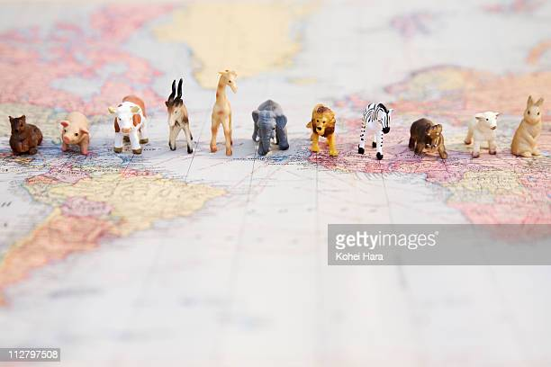 animals on a world map