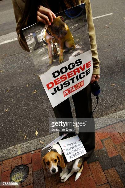 Animals rights activist Julia Novak and her dog Frankie wait outside a sentencing hearing for Atlanta Falcons quarterback Michael Vick in federal...