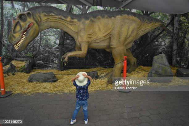 A animatronic of Allosaurus looks during a tour as part of the exhibition 'Dinasaurios Animatronicos' at Parque Naucalli on July 21 2018 in Naucalpan...