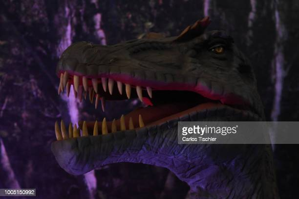 A animatronic of Spinosaurus looks during a tour as part of the exhibition 'Dinasaurios Animatronicos' at Parque Naucalli on July 21 2018 in...