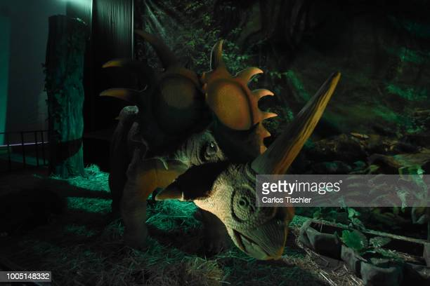A animatronic of Triceratops looks during a tour as part of the exhibition 'Dinasaurios Animatronicos' at Parque Naucalli on July 21 2018 in...