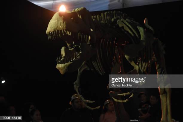 A animatronic of Tyrannosaurus rex Skeletor looks during a tour as part of the exhibition 'Dinasaurios Animatronicos' at Parque Naucalli on July 21...