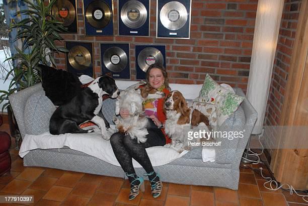 Anita Hegerland mit den Hunden der Familie Maximus den WelshSpringerSpanielHündinnen Bianca Mimie Homestory Insel Nesoya Norwegen Europa Wohnzimmer...