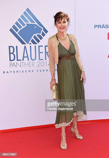Anja Kruse attends the 'Bayerischer Fernsehpreis 2014' at Prinzregententheater on May 23 2014 in Munich Germany