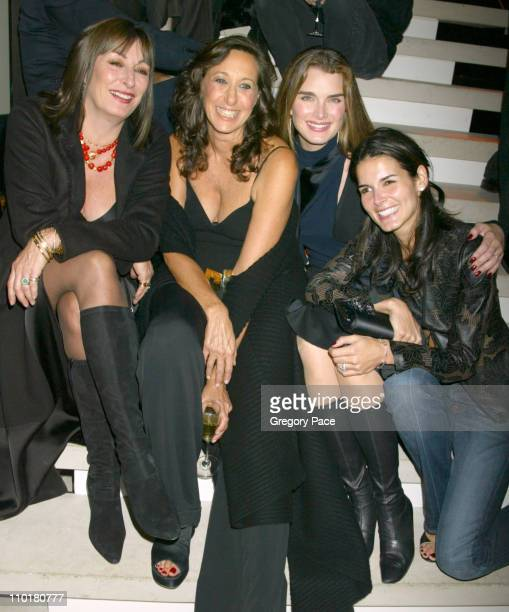 Anjelica Huston Donna Karan Brooke Shields and Angie Harmon