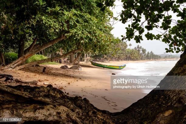 ankobra beach, axim, ghana - gold coast stock pictures, royalty-free photos & images