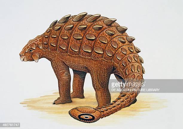 Ankylosaurus magniventris Ankylosauridae Late Cretaceous Artwork by Craig Robson