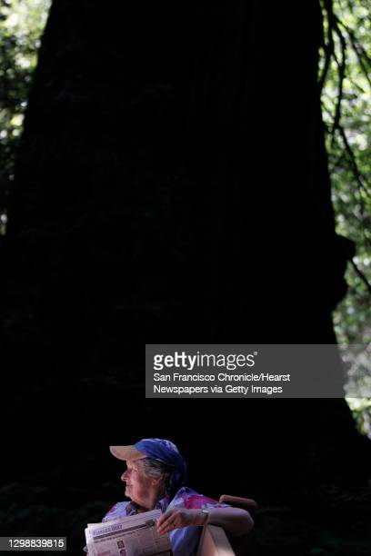 Ann O'Dwyer from Ireland, reads the newspaper as her husband hikes higher up through the redwoods at Muir Woods National Monument May 15, 2014 in...