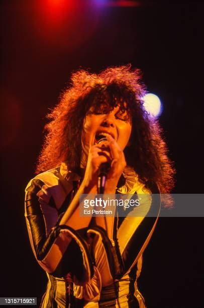 Ann Wilson performs with Heart at Concord Pavilion on August 1, 1980 in Concord, California.