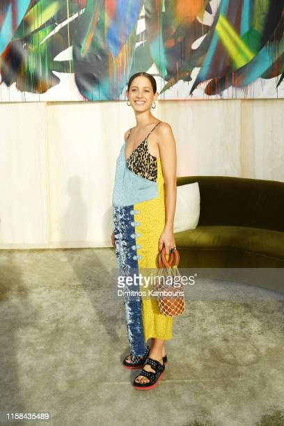Anna Clarin attends A Magical Summer Night At Hudson Yards Celebrating The Lifestyle Of 35 Hudson Yards on June 25, 2019 in New York City.