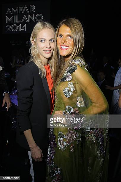 Anna Dello Russo attends the amfAR Milano 2014 Gala Dinner and Auction as part of Milan Fashion Week Womenswear Spring/Summer 2015 on September 20...