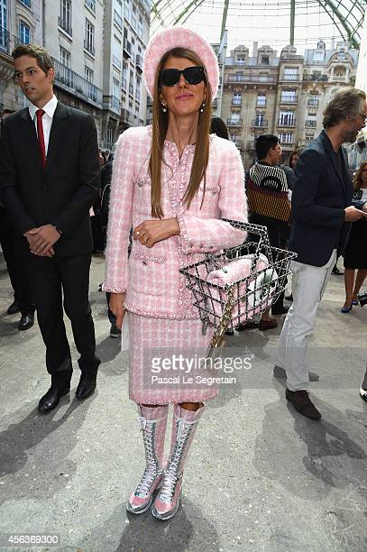 Anna Dello Russo attends the Chanel show as part of the Paris Fashion Week Womenswear Spring/Summer 2015 on September 30 2014 in Paris France