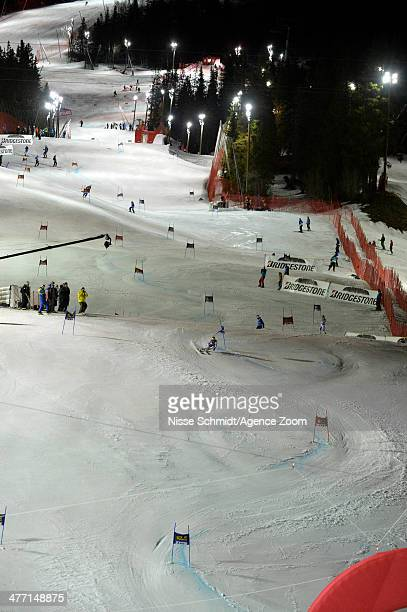 Anna Fenninger of Austria competes during the Audi FIS Alpine Ski World Cup Women's Giant Slalom on March 07 2014 in Are Sweden