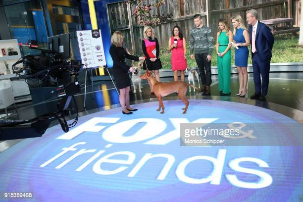 Anna Gracie Laura Kieffer Janice Dean Gail Miller Bisher Tim Tebow Jillian Mele Brian Kilmeade Ainsley Earhardt and Steve Doocy at Fox News Studios...