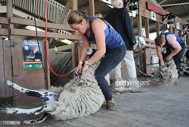 Anna Hill from Malton enters the sheep shearing competition at the Great Yorkshire Show on July 9 2013 in Harrogate England The Great Yorkshire Show...