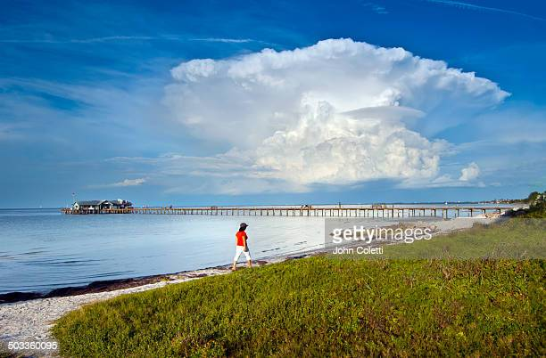 anna maria island, florida - anna maria island stock pictures, royalty-free photos & images