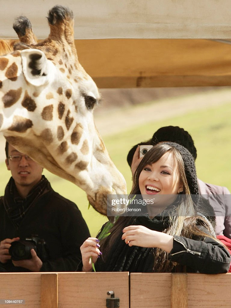 Anna Maria Perez de Tagle Feeds Giraffe And Rides Flightline At San Diego Zoo Safari Park : News Photo