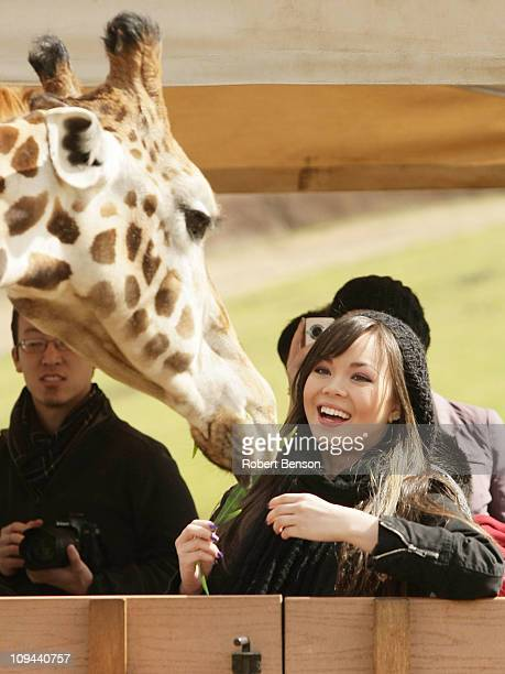 Anna Maria Perez de Tagle feeds a giraffe during a visit to the San Diego Zoo Safari Park on February 20 2011 in San Diego California