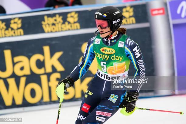 MARIBOR SLOVENIA MARIBOR SLOVENIA Anna Swenn Larsson of Sweden celebrating her second place at the Audi FIS Alpine Ski World Cup Women's Slalom...