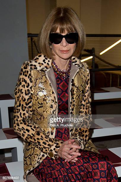 Anna Wintour sits on the front row of Roksanda runway show during London Fashion Week Spring/Summer collections 2017 on September 19 2016 in London...