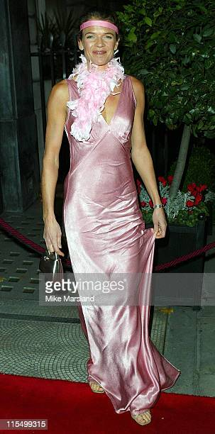 Annabel Croft during 14th Annual Angels Ball at Sheraton Park Lane Hotel in London Great Britain