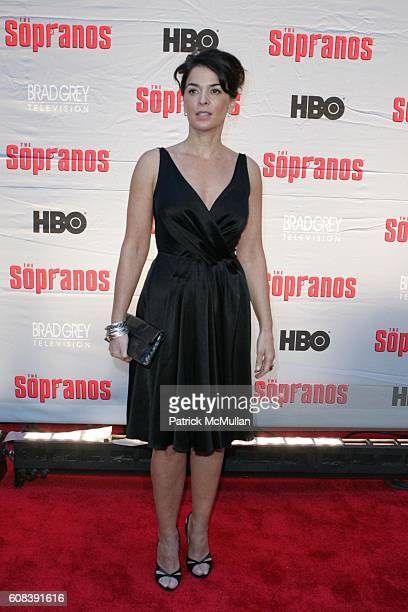 Annabella Sciorra attends HBO and BRAD GREY TELEVISION Present the World Premiere of the HBO Original Series 'THE SOPRANOS' at Radio City Music Hall...