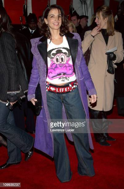 Annabella Sciorra during 25th Hour World Premiere at Ziegfeld Theater in New York New York United States