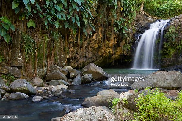 Annandale Falls, Constantine, St George, Grenada, Central America & the Caribbean