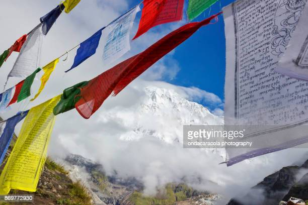 annapurna base camp - annapurna conservation area stock photos and pictures