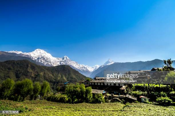 Annapurna Base Camp Trekking: landscape of Annapurna range on the way.