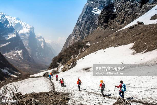 annapurna base camp trekking: trekkers were walking down from base camp. - annapurna conservation area stock photos and pictures