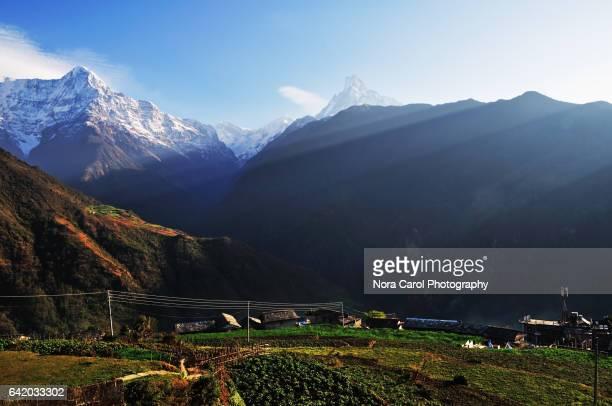 Annapurna Himalaya mountain seen fom Ghandruk village in Nepal