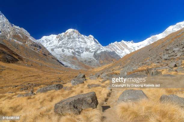 annapurna mountain range from the annapurna base camp (abc), nepal. - copyright by siripong kaewla iad stock photos and pictures