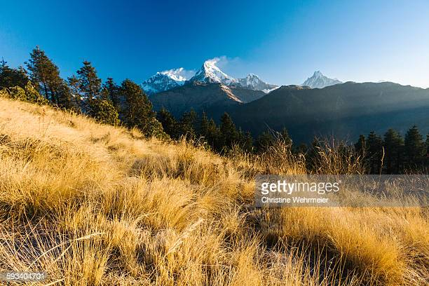 annapurna mountain range, nepal - christine wehrmeier stock pictures, royalty-free photos & images