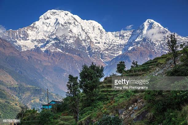 annapurna south, landruk, annapurna region, nepal - annapurna south stock photos and pictures