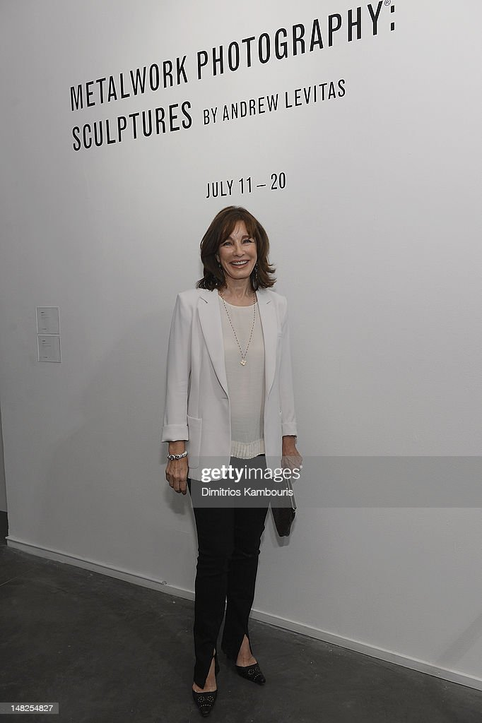 Anne Archer attends 'Metal Works Photography: Sculptures' By Andrew Levitas Exhibition at Phillips de Pury & Company on July 12, 2012 in New York City.