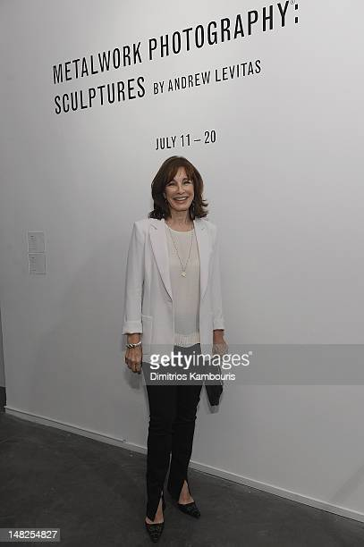 Anne Archer attends 'Metal Works Photography Sculptures' By Andrew Levitas Exhibition at Phillips de Pury Company on July 12 2012 in New York City