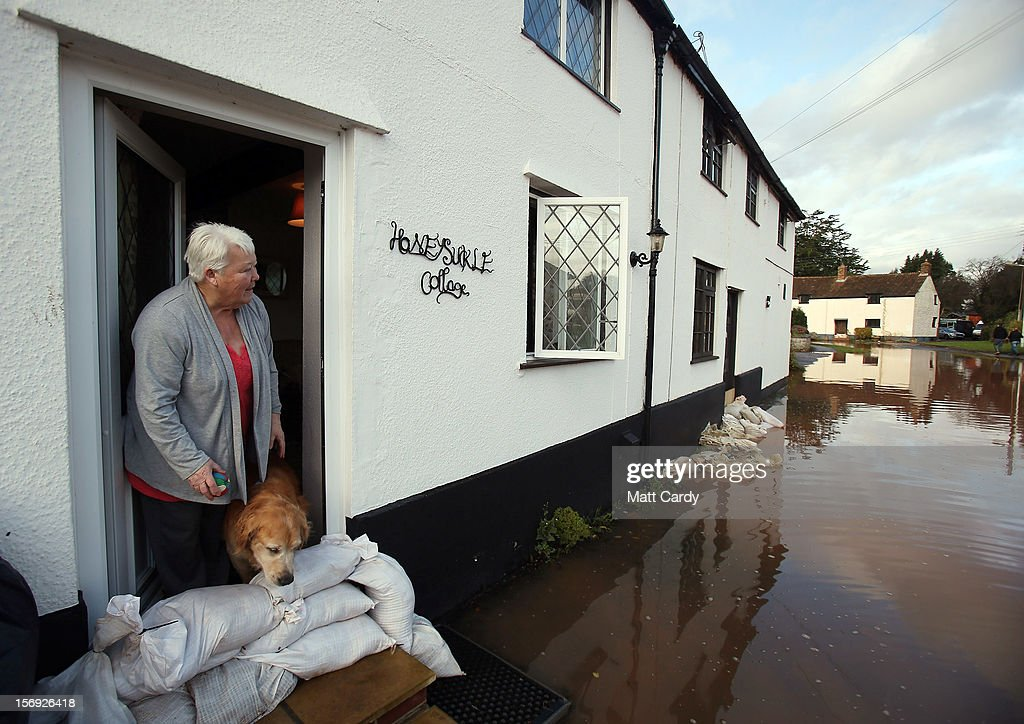 Anne Bartlett and her dog Henry look out from their flooded property in the centre of the village of Ruishton, near Taunton, on November 25, 2012 in Somerset, England. Another band of heavy rain and wind continued to bring disruption to many parts of the country today particularly in the south west which was already suffering from flooding earlier in the week.