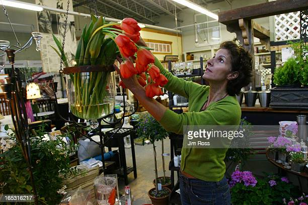 Anne Cavan fixes some flowers at her store Cavan's in Erin JIM ROSSPhoto097764